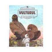 Animale salbatice in natura - Vulturul