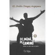 De mana, pe Camino - Ovidiu Dragos Argesanu