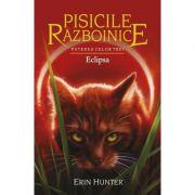 Pisicile Războinice, volumul 16. Eclipsa - Puterea celor trei