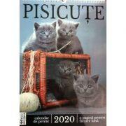 Calendar pisicute 2020 - o pagina pentru fiecare luna