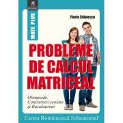 Probleme de calcul matriceal - Florin Stanescu