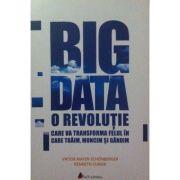 Big Data. O revolutie care va transforma felul in care traim, muncim si gandim - Viktor Mayer-Schonberger