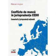 Conflicte de munca in jurisprudenta CEDO - Comentarii si jurisprudenta nationala (2020) - Razvan Anghel