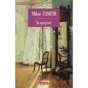 In așteptare - Mihai Zamfir