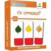 TrioPuzzle: Ce urmeaza?