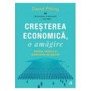 Creșterea economică, o amăgire - David Pilling