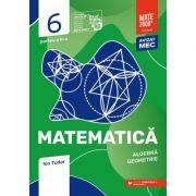 Matematică. Algebră, geometrie. Caiet de lucru. Clasa a VI-a. Inițiere. Partea II - Ion Tudor