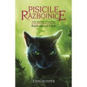 Pisicile Razboinice, volumul 23. Razboinicul Uitat - Erin Hunter