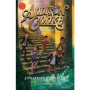Addison Cooke şi inelul destinului - Jonathan W. Stokes