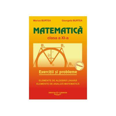 Matematica - Exercitii si probleme - Clasa a XI-a
