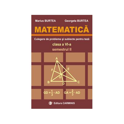 Matematica - Clasa a VI-a - Culegere de probleme si subiecte pentru teze - Semestrul II