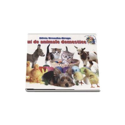 Pui de animale domestice - Silvia Ursache-Brega