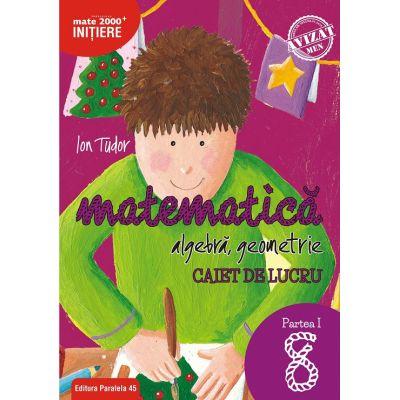 Matematică Initiere - Algebră, geometrie. Caiet de lucru. Clasa a VIII-a. Partea I