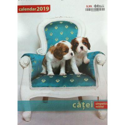Calendar 2019 catei