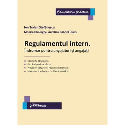 Regulamentul intern. Indrumar pentru angajatori si angajati - Ion Traian Stefanescu